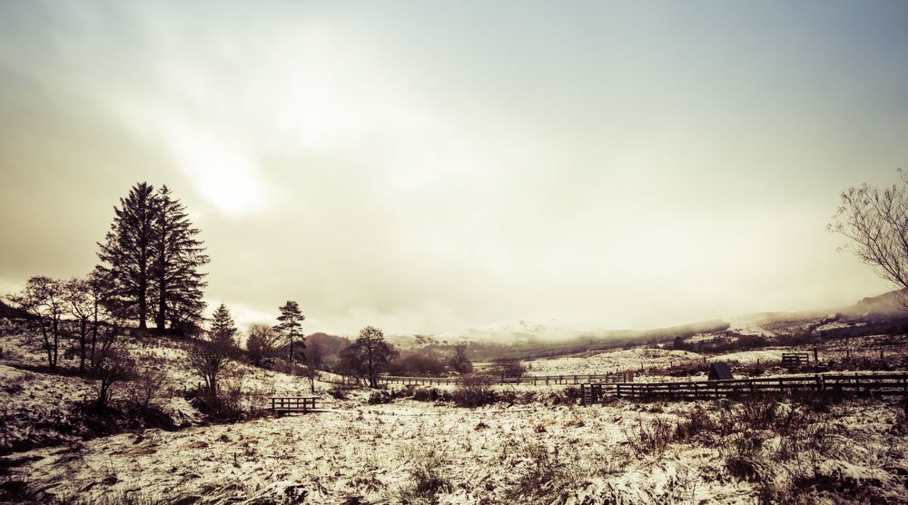 Snow covered landscape of the west highlands of scotland, showing a valley and sparse trees